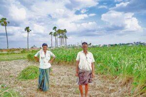 Modi farmers income double